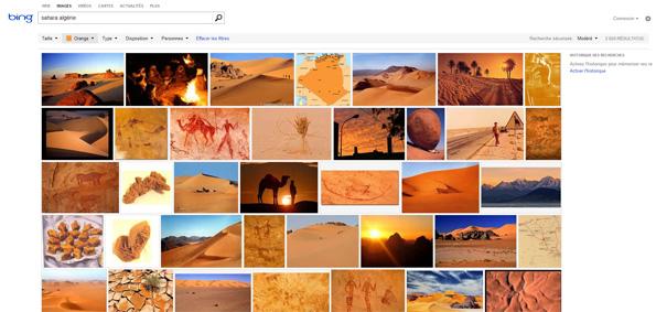 Le nouveau Bing Image Search fait-il mieux que Google Images ?