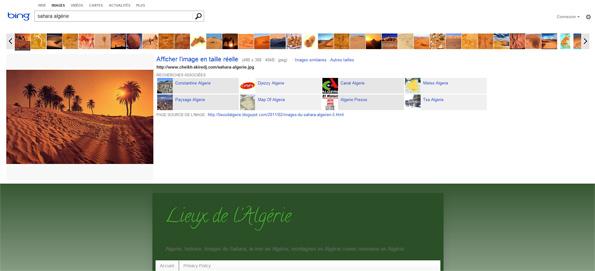 La nouvelle recherche d'images chez Bing