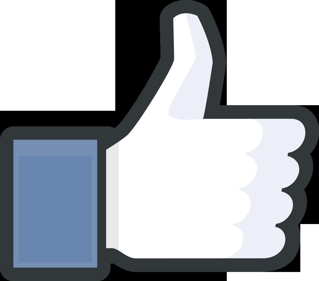 Notoriété de Facebook en France (logo J'aime de Facebook)