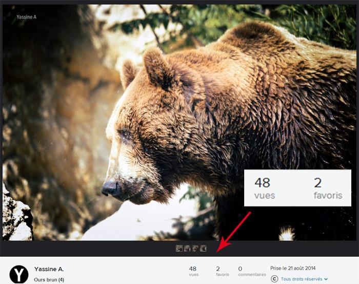 Nombre de vues dans Flickr