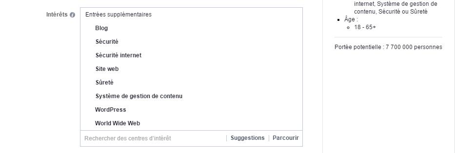 Le choix des intérêts (mots clés) dans le Gestionnaire de publicités de Facebook