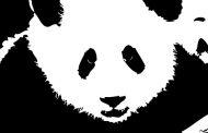 24ème mise à jour des données de Google Panda