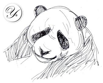 Panda: Deux mises à jour des données au mois de novembre