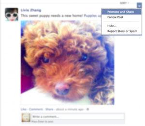 Promoted Post : Promouvoir les publication de ses amis dans Facebook