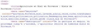 Consultation des mots clés dans le code source des pages importantes des sites concurrents.