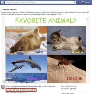 Like Baiting dans Facebook