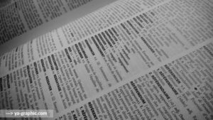 Les mots du dictionnaire 1996
