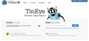 TinEye : trouver des images similaires