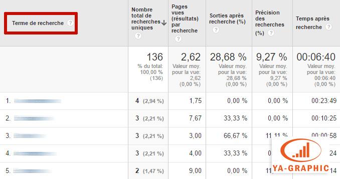 Google Analytics : requêtes tapées par les visiteurs dans un site
