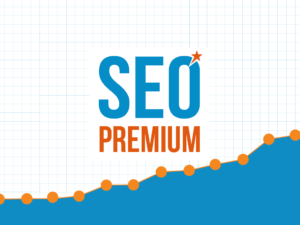Articles Premiums SEO