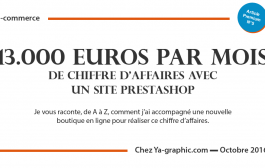 E-commerce : 13.000 Euros par Mois de Chiffre d'Affaires avec Prestashop
