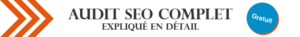 Audit SEO Complet