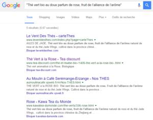 Contenu Copié : vérification dans Google Search