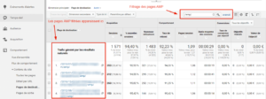 Filtrage des pages AMP