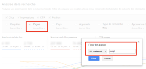 Filtre des pages Google AMP dans la Search Console