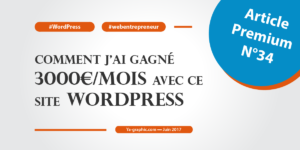 Article Premium n°34: Comment j'ai gagné 3000€ par mois avec ce site WordPress