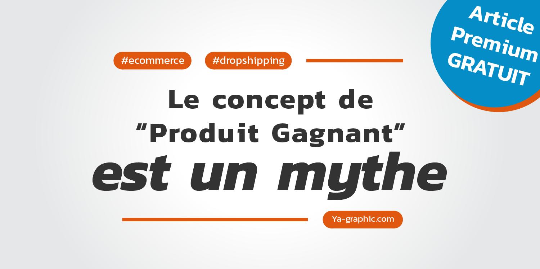 Article Premium gratuit : concept de Produit Gagnant en Dropshipping est un mythe